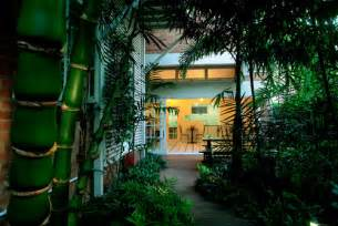 home interior design courses backyard bliss turn your yard into a rainforest sanctuary