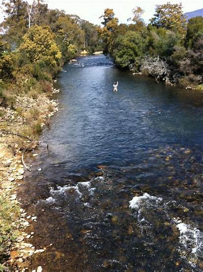 Meander River Tasmania Fishing Fly Northern Nymphing