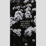 Sleeping With Sirens Quotes From Songs | 500 x 889 jpeg 69kB