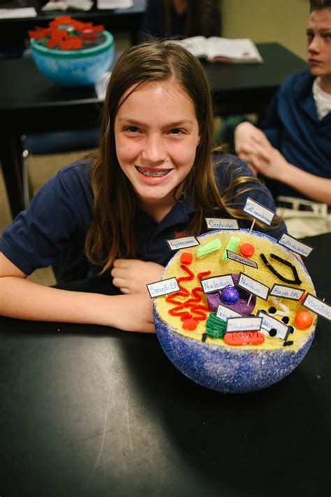 grade cell project