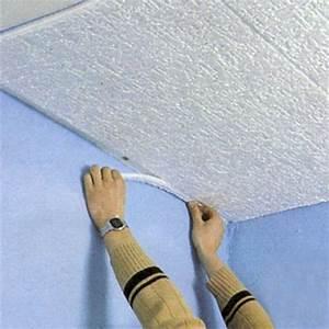 Dalle Plafond Polystyrene : dalle de plafond salle de bain maison travaux ~ Premium-room.com Idées de Décoration