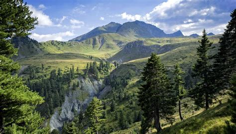 Kosovo Travel Guide and Travel Information | World Travel ...