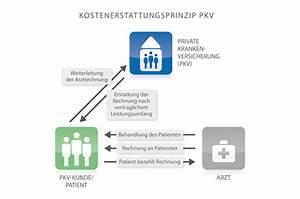 Basistarif Pkv Abrechnung : systemunterschiede versicherungsmakler thomas sch sser ~ Themetempest.com Abrechnung