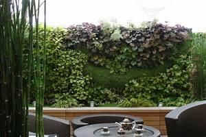 Mur Anti Bruit Végétal : mur vegetalise ~ Melissatoandfro.com Idées de Décoration