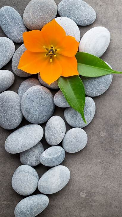 Iphone Zen Flower Fondos Stone Backgrounds Pantalla