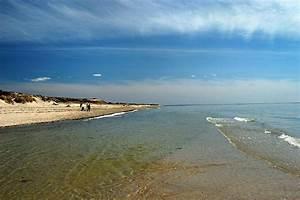 Our Picks 5 Best Secret Beaches On Cape Cod Cape Cod