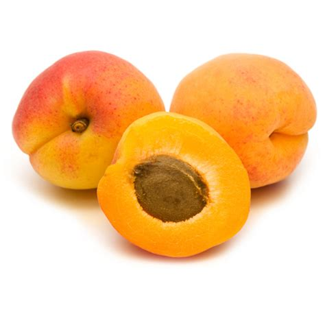 Apricot Pictures