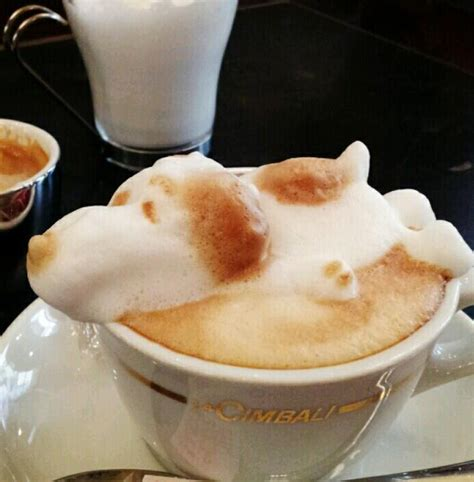 Anyone knows how to make thick coffee foam ?! The Bloomin' Couch: Coffee art take two