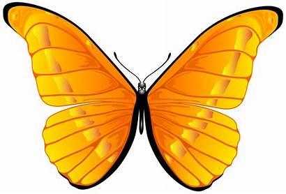 Butterfly Orange Clipart Clip Transparent Butterflies Gold