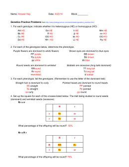 Genetics Practice Problems  Simple Worksheet (he) (ho) Aa