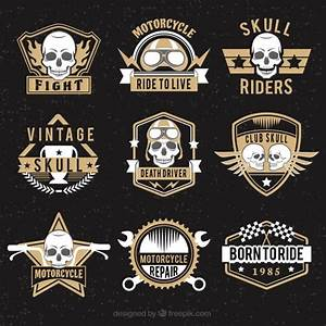 Collection of skull logos with brown details Vector | Free ...