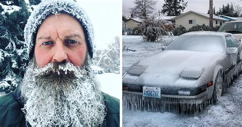 It's So Cold In America And Canada That People Are Posting