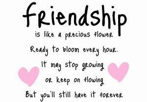 Cute Friendship Quotes Funny QuotesGram