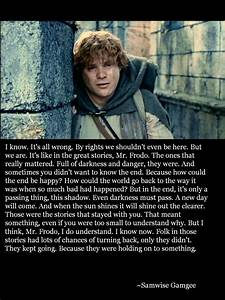 Samwise Gamgee I absolutely love this | Lord of the rings ...
