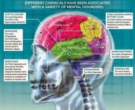 Disease Mental Illness Brain Chemicals
