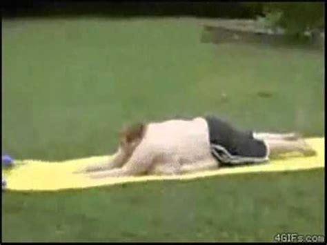 foto de FAT GUY ON WATERSLIDE FAIL YouTube