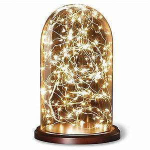 loft living cloche with 20 foot led string lights bed With outdoor string lights bed bath and beyond