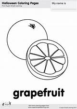 Coloring Grapefruit Template Flashcards Pages Simple Super Printable Templates Daily Routines Sketch sketch template