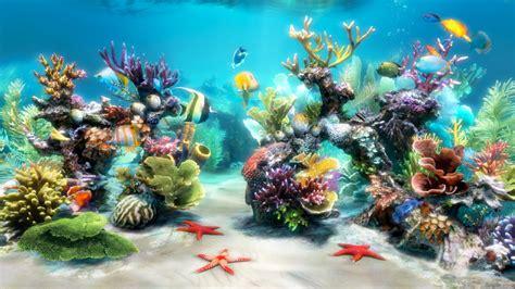 bureau virtuel windows cherche fond écran aquarium vivant gratuit