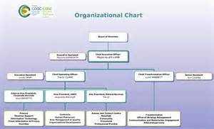 Home Care Organizational Chart