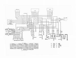 Honda Fourtrax 300 Wiring Diagram