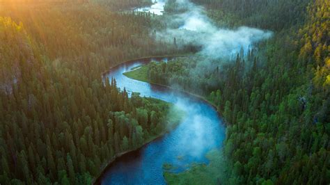 Aerial View Of Forest And River Landscape HD Nature ...