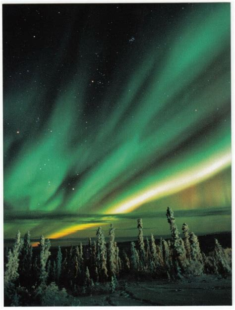 Postcard Aurora Borealis Northern Lights Yukon Canada