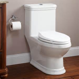 the flushing toilet skyla dual flush one elongated siphonic toilet