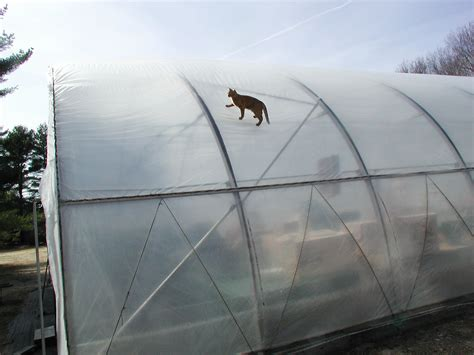 air inflated double layer polyethylene greenhouse