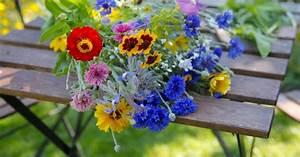 blumenstrauss schnittblumen haltbar machen mein schoner With katzennetz balkon mit garden sweet pea