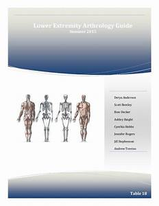 Lower Extremity Joint Guide