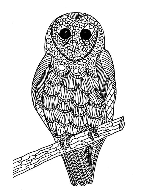 lunchtime bird coloring pages thriftyfun