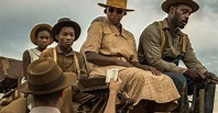 'Mudbound' Has More To Say About Whiteness In America Than ...
