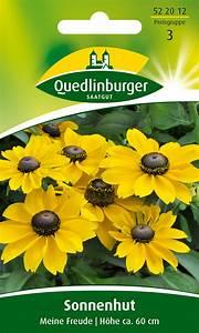 Sonnenhut Pflanze Kaufen : sonnenhut meine freude von quedlinburger saatgut ~ Buech-reservation.com Haus und Dekorationen