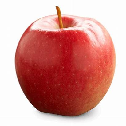 Apple Fresh Ontario Varieties Kashmiri Apples Fruit