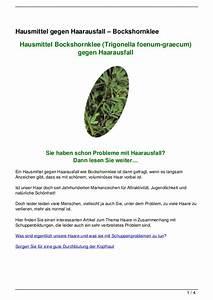 Hausmittel Gegen Kellerasseln : hausmittel gegen haarausfall bockshornklee ~ Lizthompson.info Haus und Dekorationen