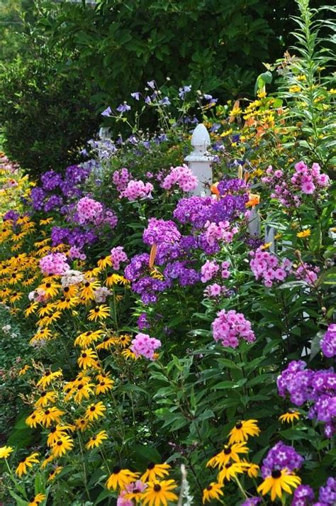 451 Best Winning Plant Combinations Images On Pinterest