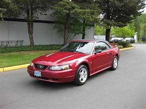 2003 Ford Mustang Deluxe CONVERTIBLE POWER TOP V6 / AUTOMATIC
