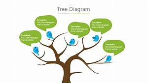 Tree Diagram - 18