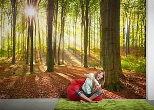 Livingwalls Fototapete Wald Im Sommer 470302