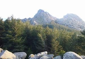 Mount Limbara - Wikipedia  Mount
