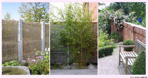 Gartenblog Geniessergarten Sichtschutz