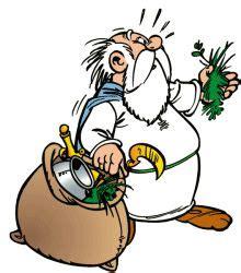 images  asterix en obelix  pinterest german