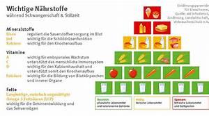 Kalorien Pro Tag Berechnen : ern hrung in der stillzeit zus tzliche kalorien sind wichtig ~ Themetempest.com Abrechnung