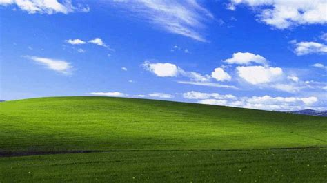 Microsoft Free Backgrounds  Wallpaper Cave