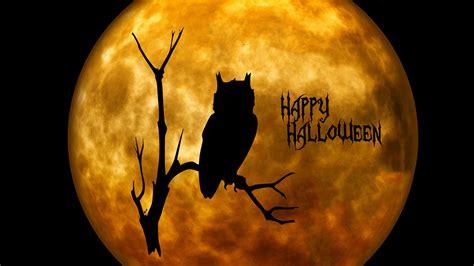 halloween hintergrundbilder  ohne registrierung