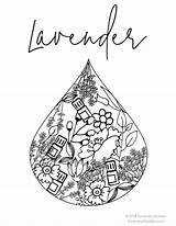 Coloring Essential Pages Oils Young Living Oil Doterra Colouring Care Skin Lavender Printable Destress Adult Worksheet Ways Aromatherapy Oily Apothecary sketch template
