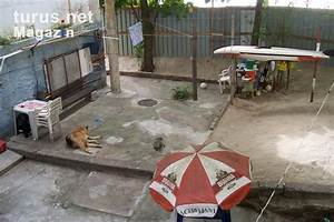 Stadtteil Von Rio De Janeiro : foto ein garten im stadtteil urca in rio de janeiro bilder von brasilien magazin ~ Watch28wear.com Haus und Dekorationen