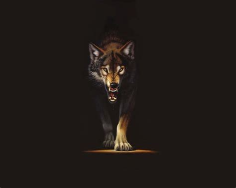 Wallpaper Black Wolf Background by Black Wolf Wallpapers Wallpaper Cave
