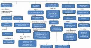 """Educación artística para primaria: Mapa Conceptual """"Cultura y sociedad"""""""